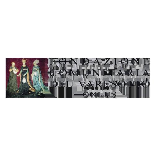 Logo Fondazione Varesotto