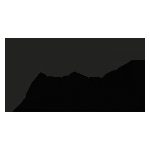 Logo Museo Novecento